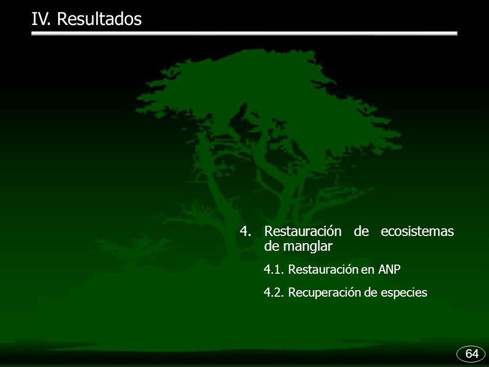 IV. Resultados Restauración de ecosistemas de manglar