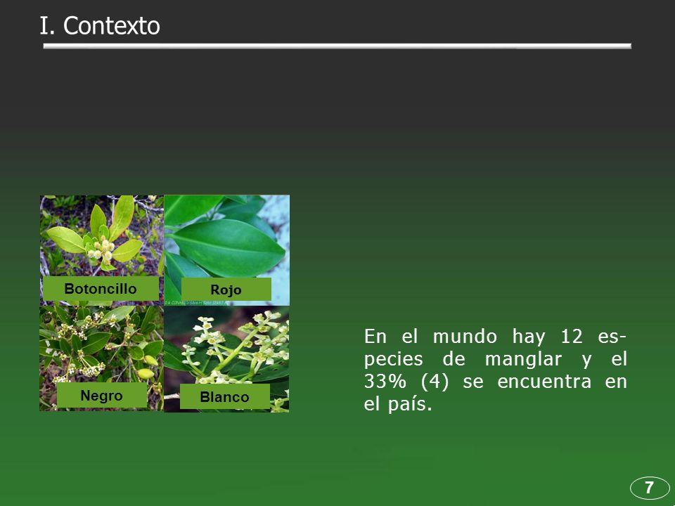 I. Contexto Botoncillo. Rojo. En el mundo hay 12 es-pecies de manglar y el 33% (4) se encuentra en el país.