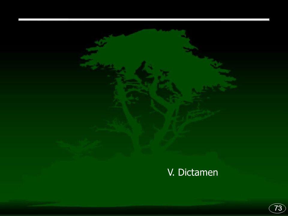 V. Dictamen 73