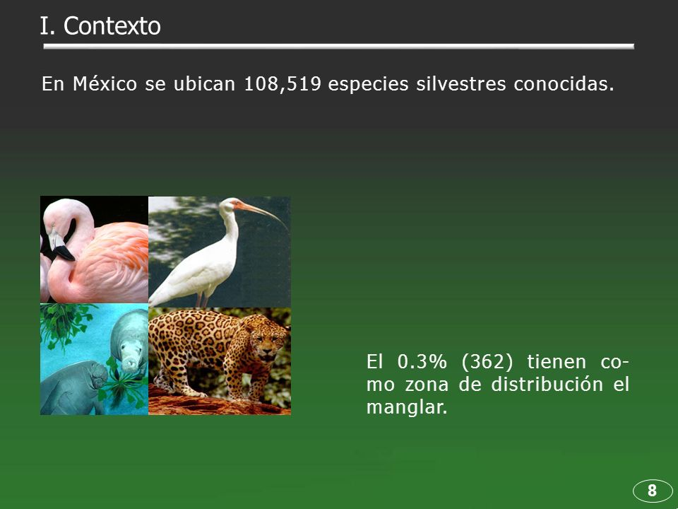 I. Contexto En México se ubican 108,519 especies silvestres conocidas.