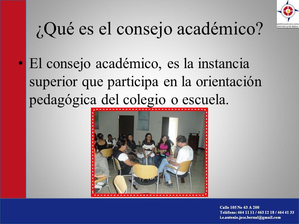 ¿Qué es el consejo académico