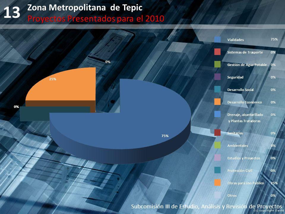 13 Zona Metropolitana de Tepic Proyectos Presentados para el 2010