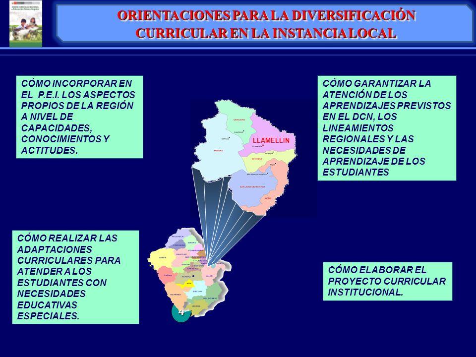 ORIENTACIONES PARA LA DIVERSIFICACIÓN CURRICULAR EN LA INSTANCIA LOCAL