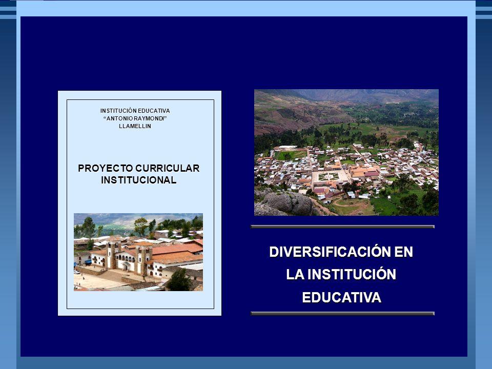 DIVERSIFICACIÓN EN LA INSTITUCIÓN EDUCATIVA