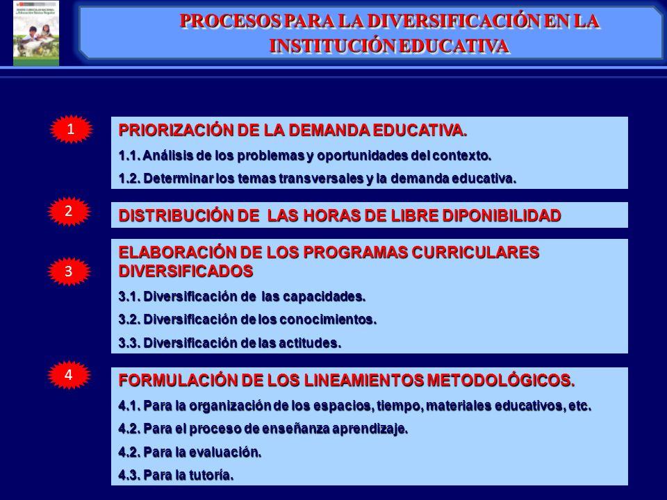 PROCESOS PARA LA DIVERSIFICACIÓN EN LA INSTITUCIÓN EDUCATIVA