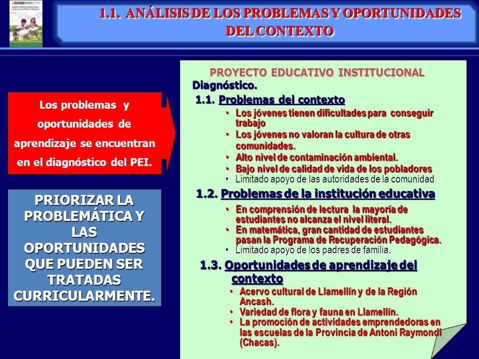 1.1. ANÁLISIS DE LOS PROBLEMAS Y OPORTUNIDADES DEL CONTEXTO