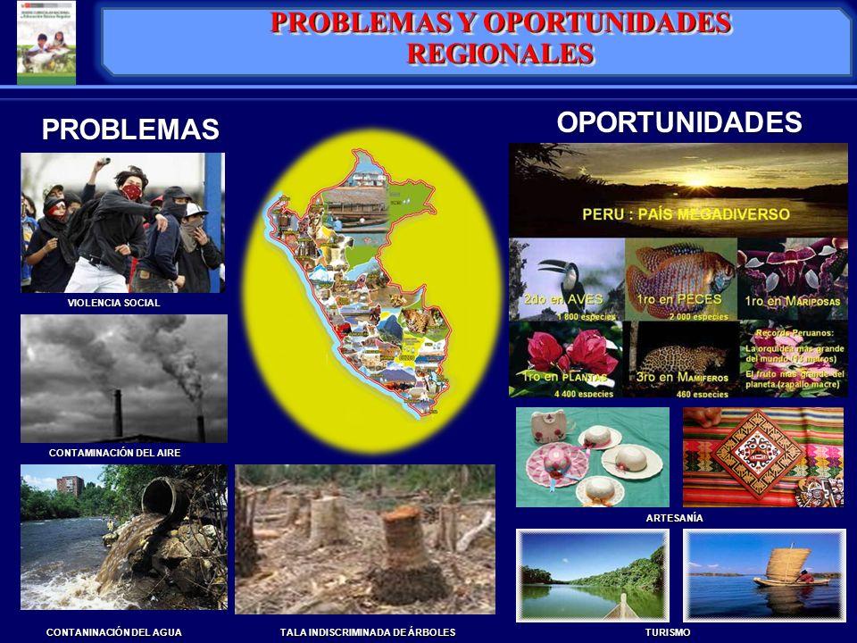 PROBLEMAS Y OPORTUNIDADES REGIONALES
