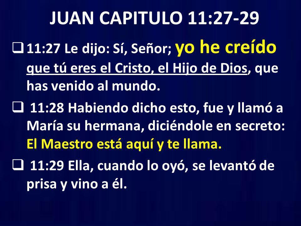 JUAN CAPITULO 11:27-29 11:27 Le dijo: Sí, Señor; yo he creído que tú eres el Cristo, el Hijo de Dios, que has venido al mundo.