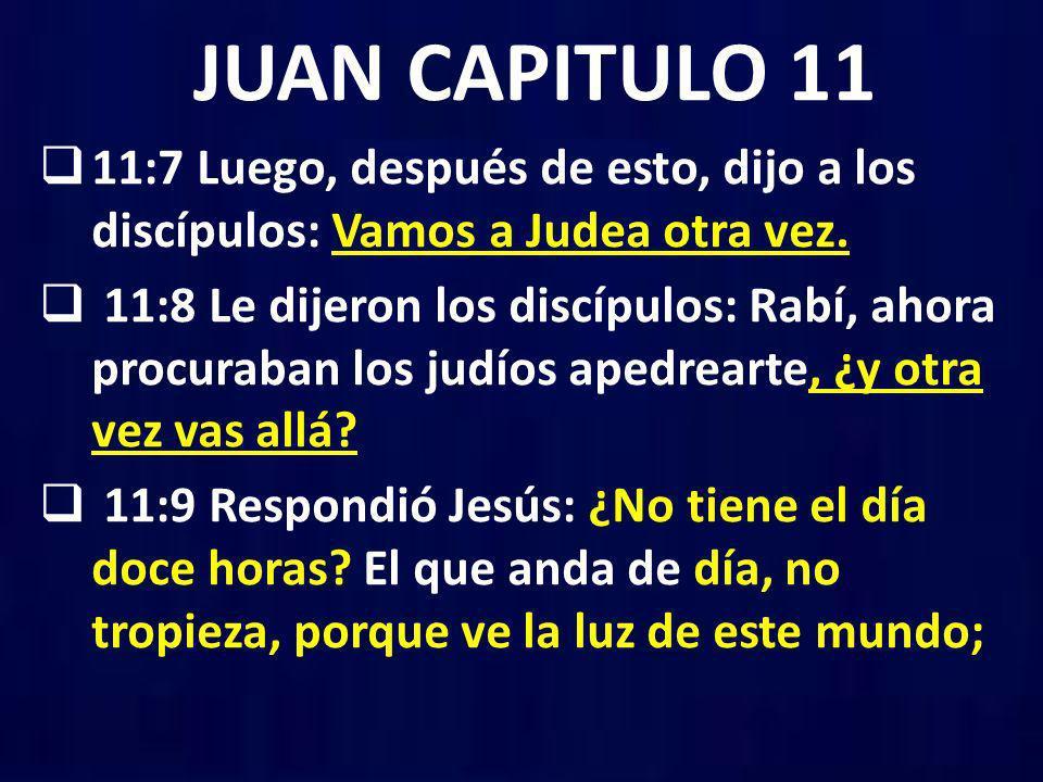 Resultado de imagen para juan 11:8