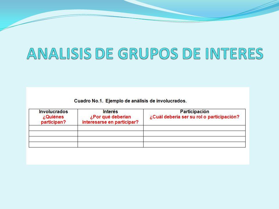 ANALISIS DE GRUPOS DE INTERES