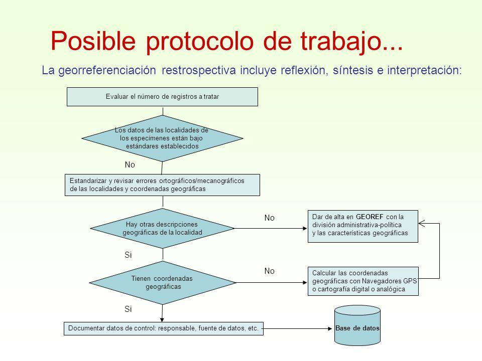 Posible protocolo de trabajo...