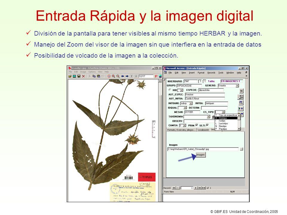 Entrada Rápida y la imagen digital