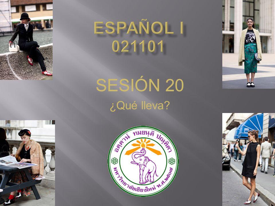 ESPAÑOL I 021101 SESIÓN 20 ¿Qué lleva