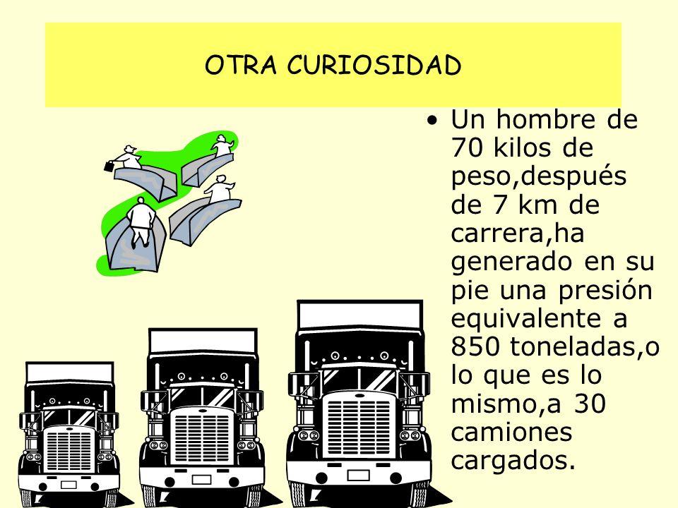 OTRA CURIOSIDAD