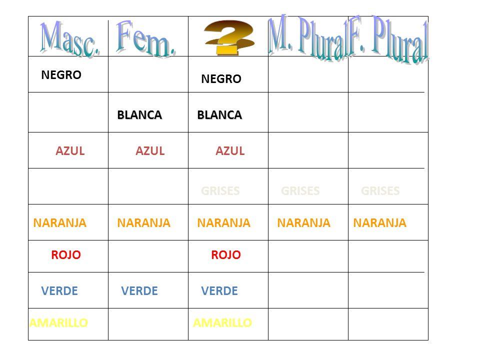 M. Plural F. Plural Masc. Fem. NEGRO NEGRO BLANCA BLANCA AZUL AZUL