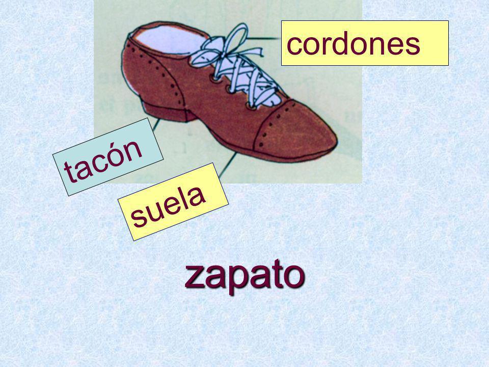cordones tacón suela zapato