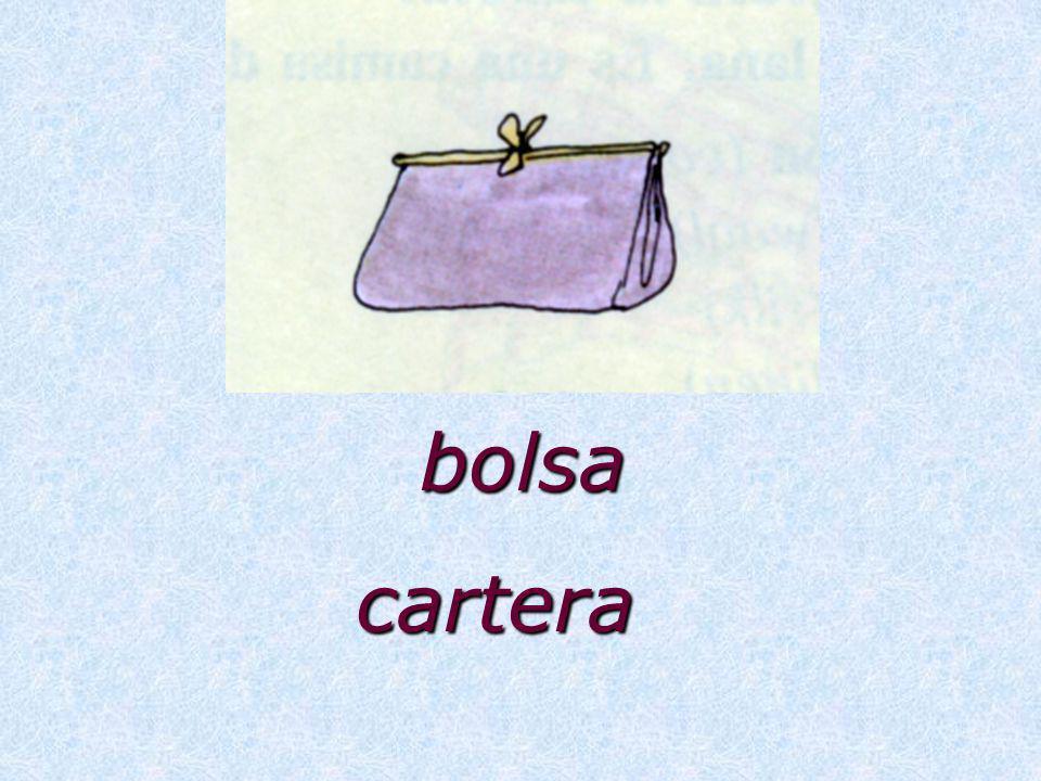 bolsa cartera
