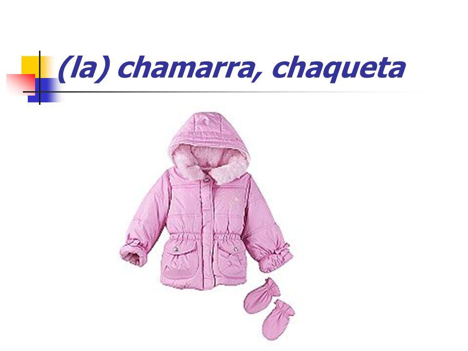 (la) chamarra, chaqueta
