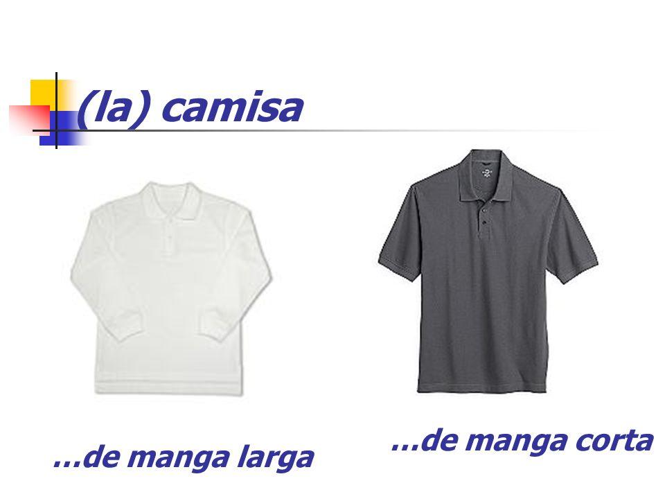 (la) camisa …de manga corta …de manga larga