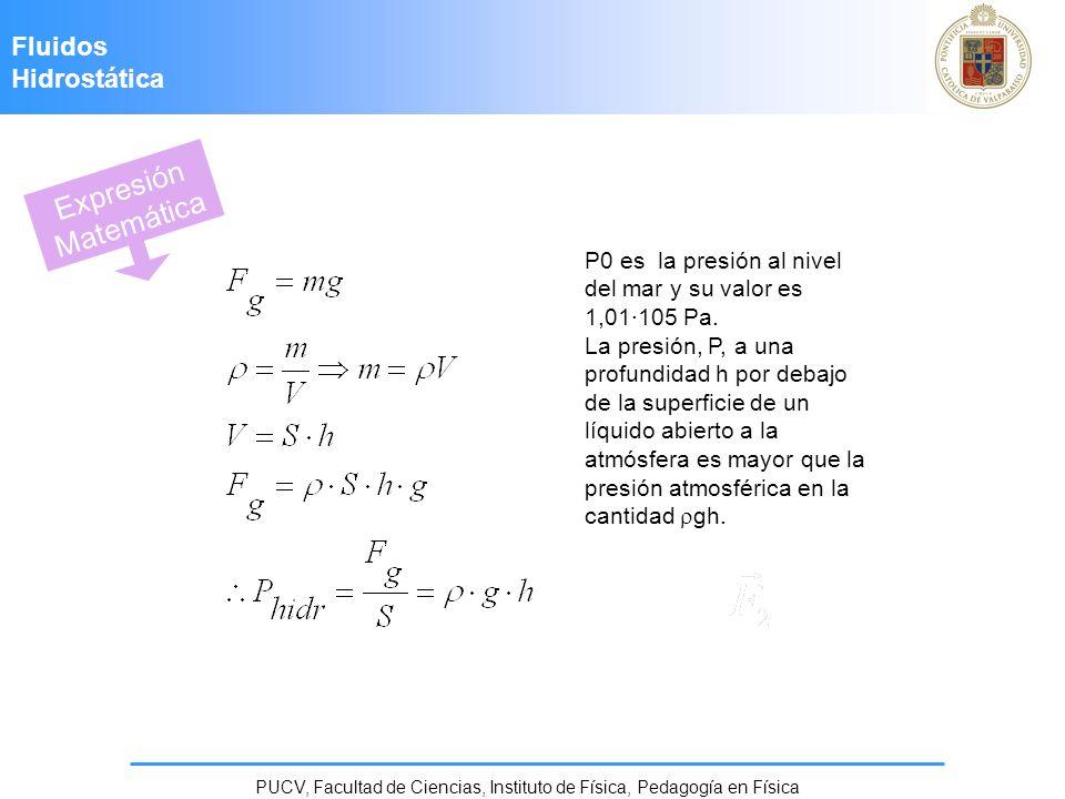 PUCV, Facultad de Ciencias, Instituto de Física, Pedagogía en Física