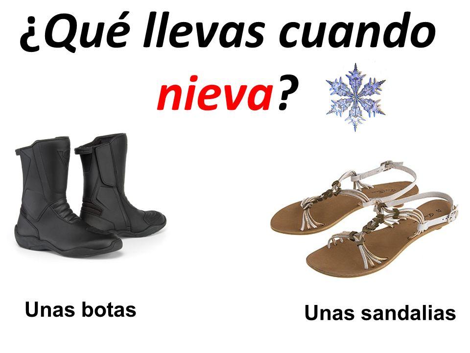 ¿Qué llevas cuando nieva