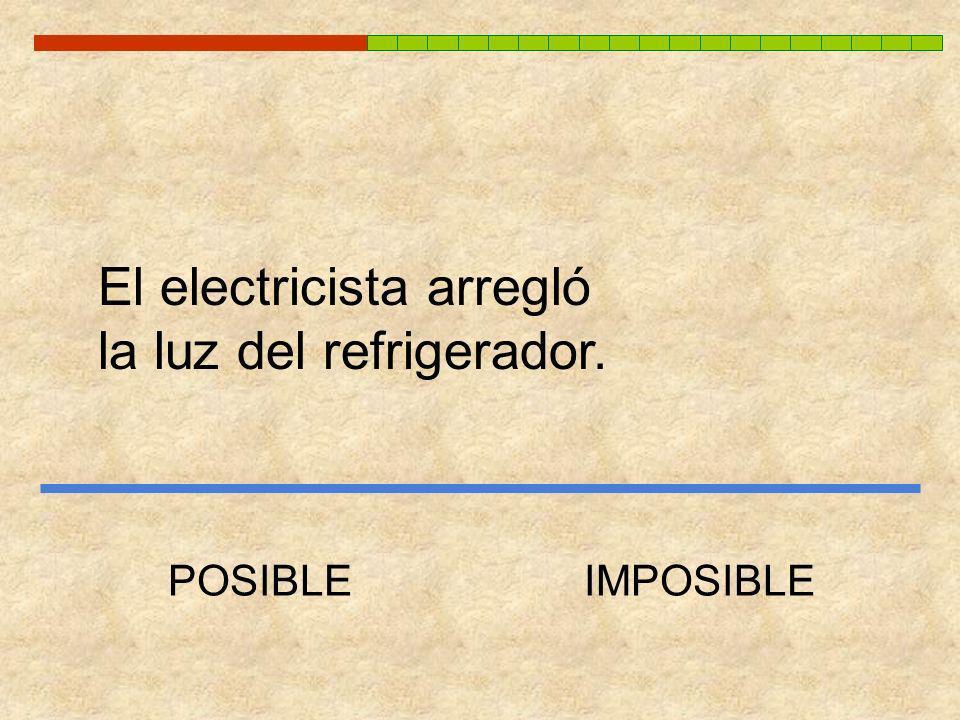 El electricista arregló la luz del refrigerador.