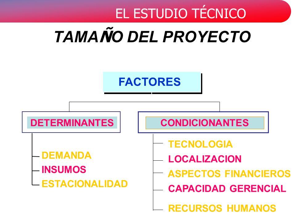 TAMAÑO DEL PROYECTO FACTORES ASPECTOS FINANCIEROS CAPACIDAD GERENCIAL