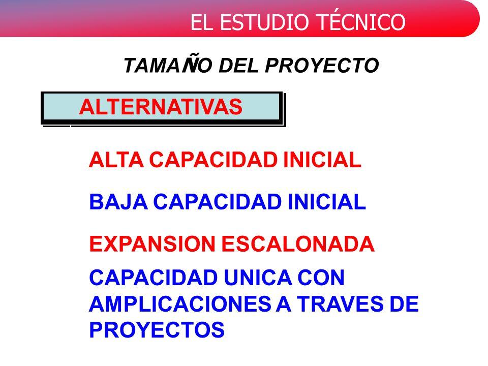 CAPACIDAD UNICA CON AMPLICACIONES A TRAVES DE PROYECTOS
