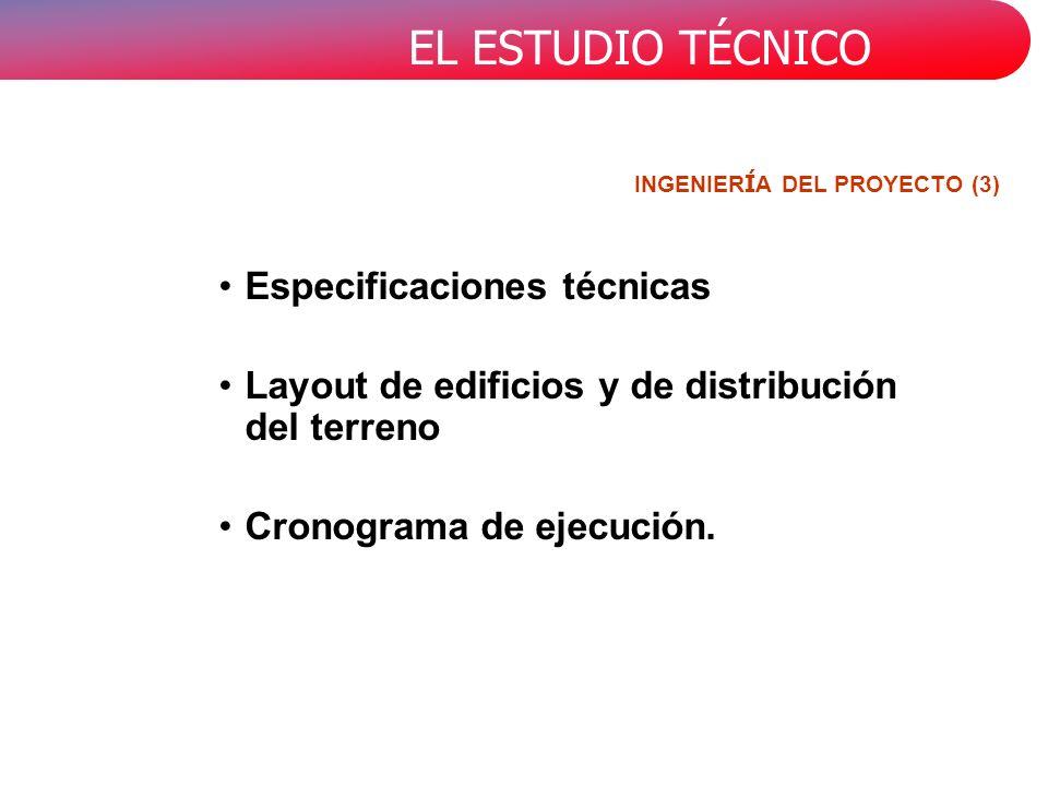 INGENIERÍA DEL PROYECTO (3)