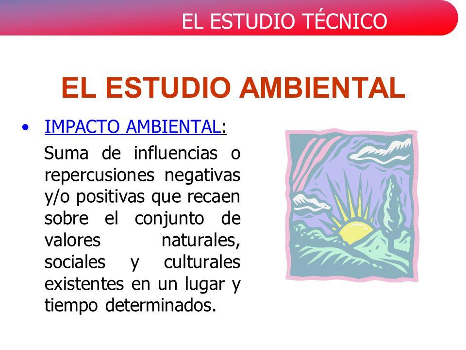EL ESTUDIO AMBIENTAL IMPACTO AMBIENTAL: