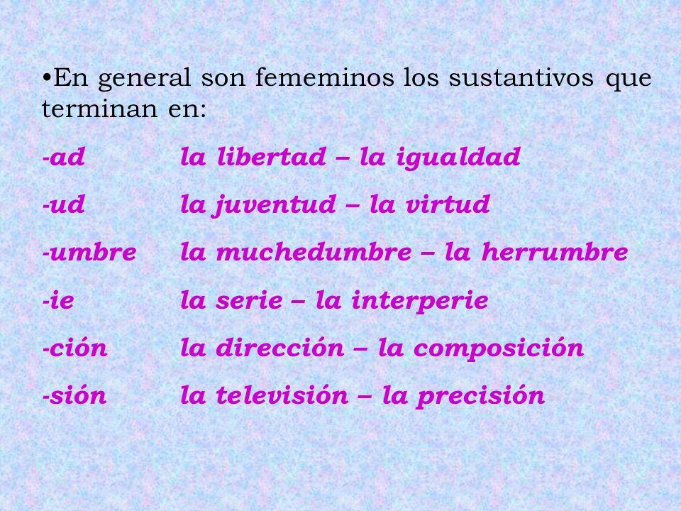 En general son fememinos los sustantivos que terminan en: