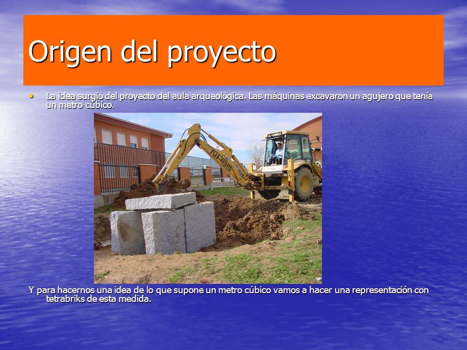 Origen del proyecto La idea surgió del proyecto del aula arqueológica. Las máquinas excavaron un agujero que tenía un metro cúbico.