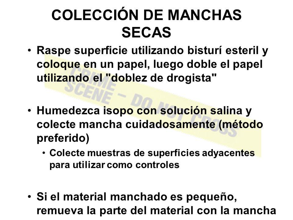 COLECCIÓN DE MANCHAS SECAS