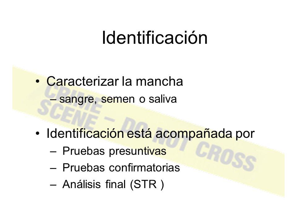 Identificación Caracterizar la mancha