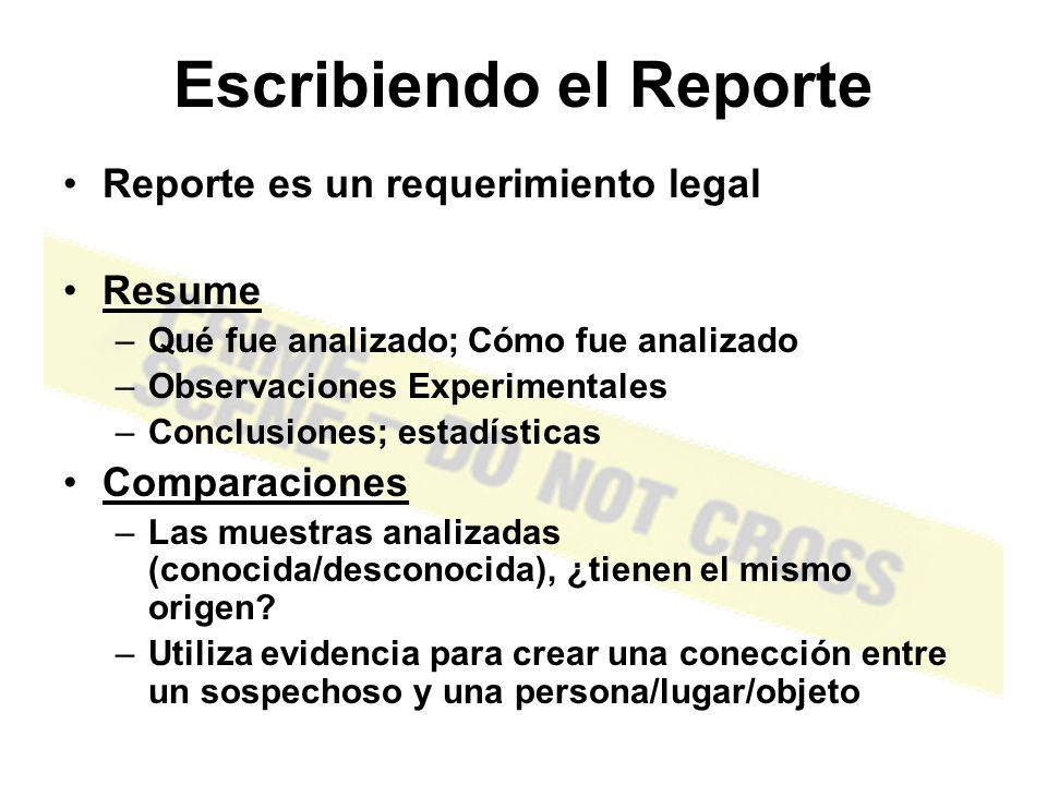 Escribiendo el Reporte