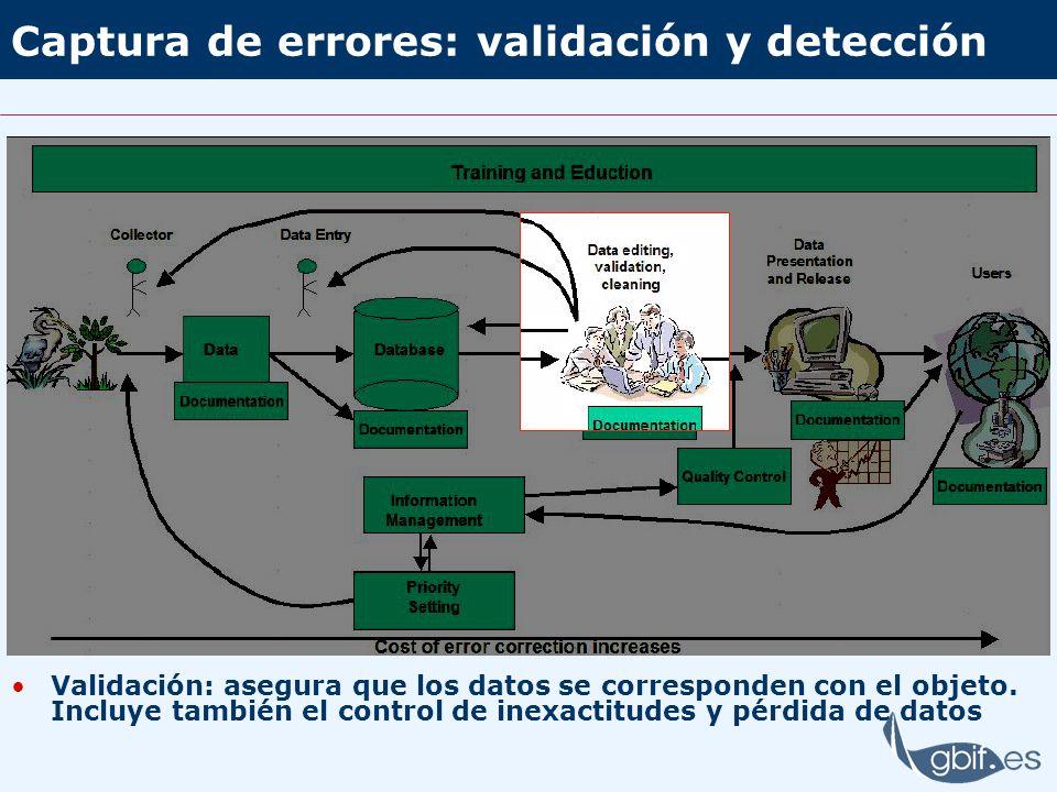 Captura de errores: validación y detección