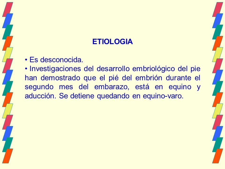 ETIOLOGIA Es desconocida.
