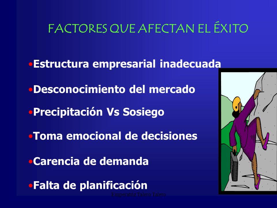 FACTORES QUE AFECTAN EL ÉXITO