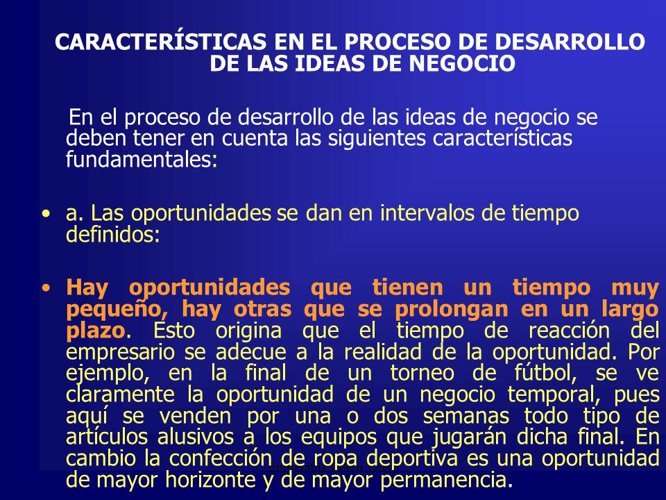 CARACTERÍSTICAS EN EL PROCESO DE DESARROLLO DE LAS IDEAS DE NEGOCIO