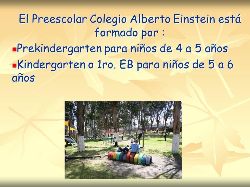 El Preescolar Colegio Alberto Einstein está formado por :
