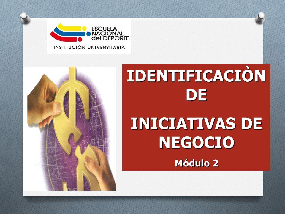 INICIATIVAS DE NEGOCIO