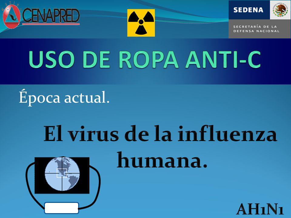 El virus de la influenza