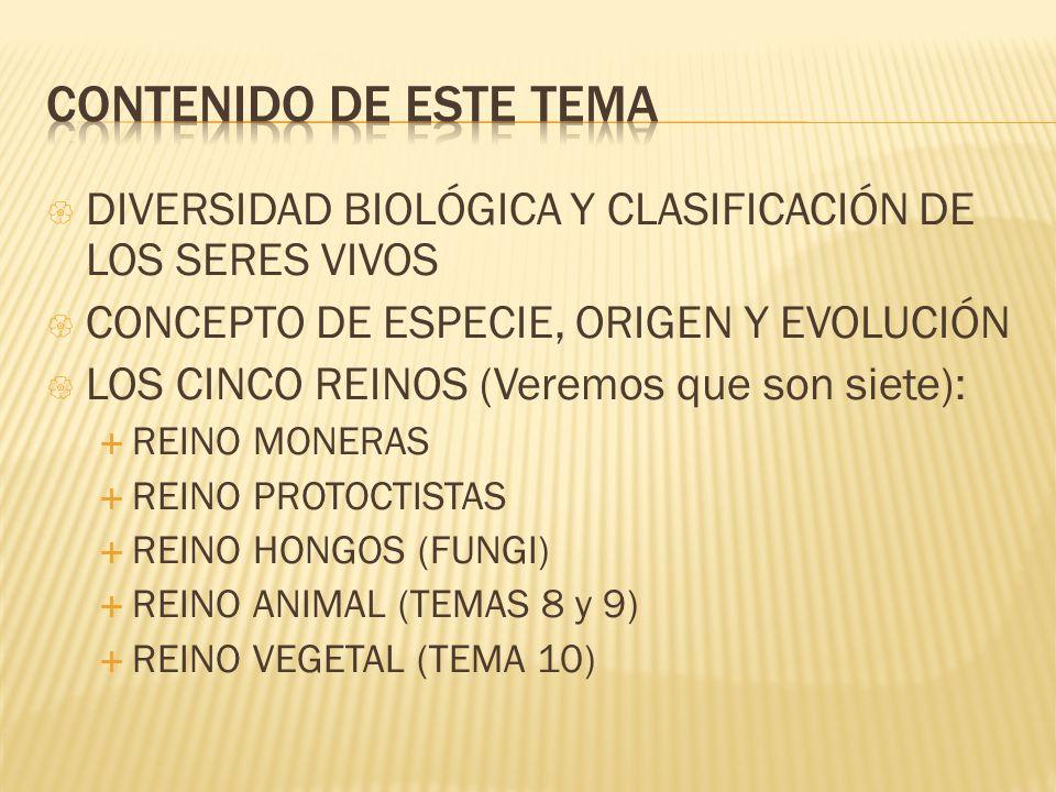 CONTENIDO DE ESTE TEMA DIVERSIDAD BIOLÓGICA Y CLASIFICACIÓN DE LOS SERES VIVOS. CONCEPTO DE ESPECIE, ORIGEN Y EVOLUCIÓN.