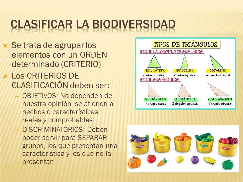 Clasificar la biodiversidad