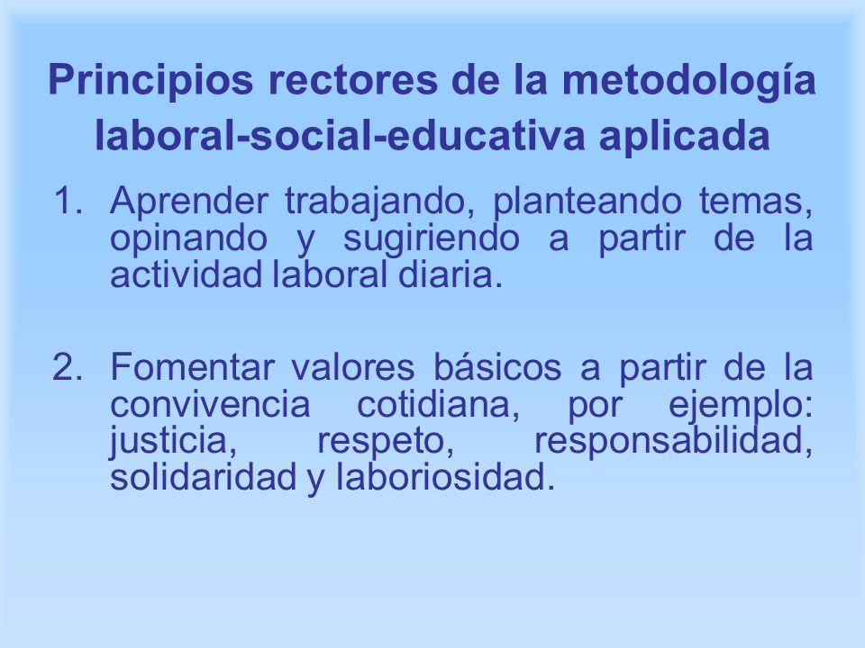Principios rectores de la metodología laboral-social-educativa aplicada