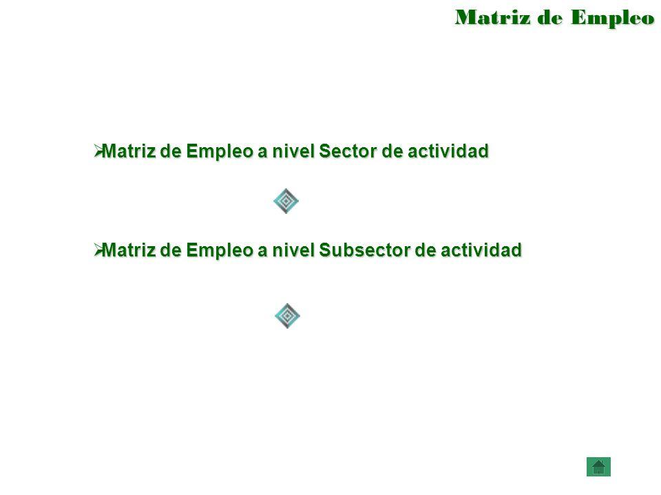 Matriz de Empleo Matriz de Empleo a nivel Sector de actividad