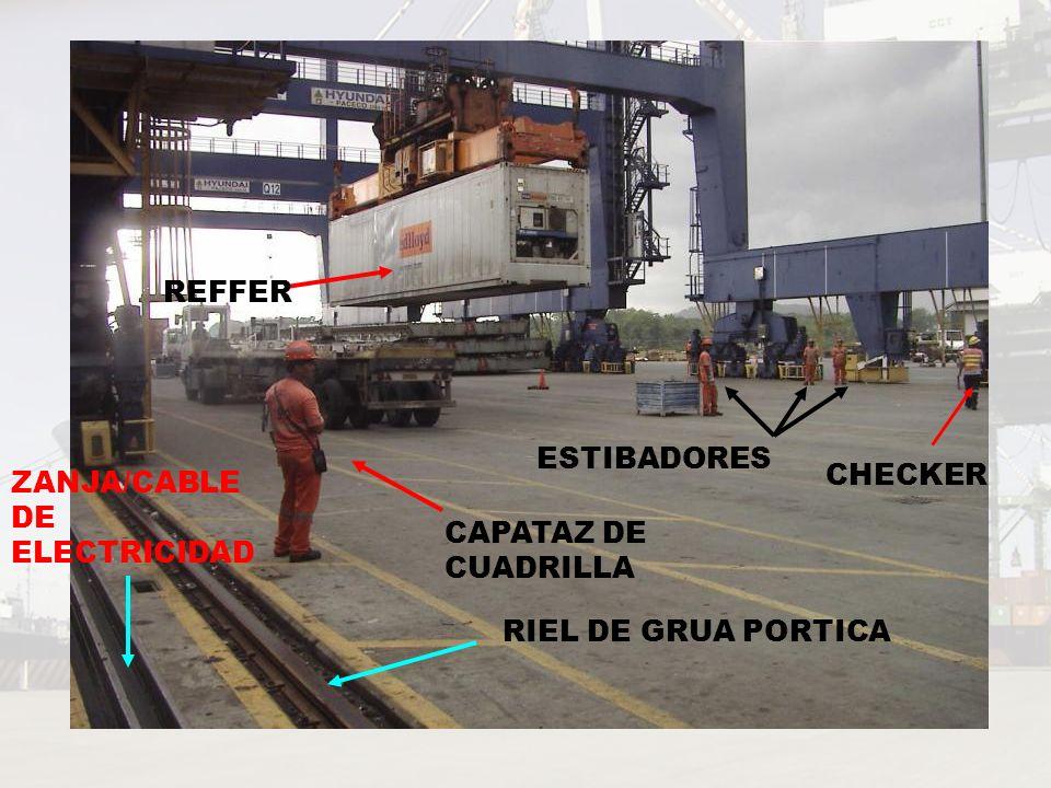 REFFER ESTIBADORES CHECKER ZANJA/CABLE DE ELECTRICIDAD CAPATAZ DE CUADRILLA RIEL DE GRUA PORTICA