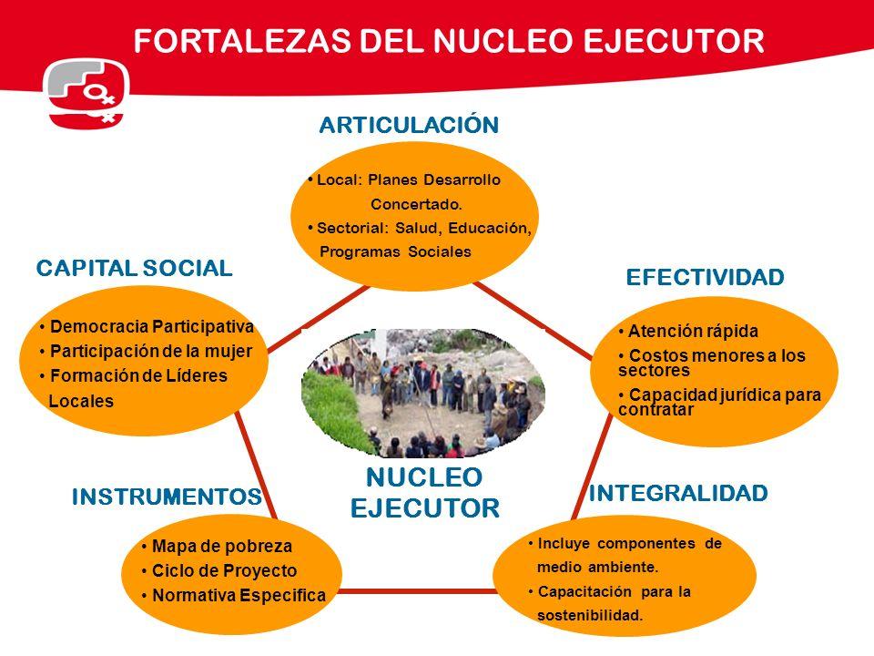FORTALEZAS DEL NUCLEO EJECUTOR