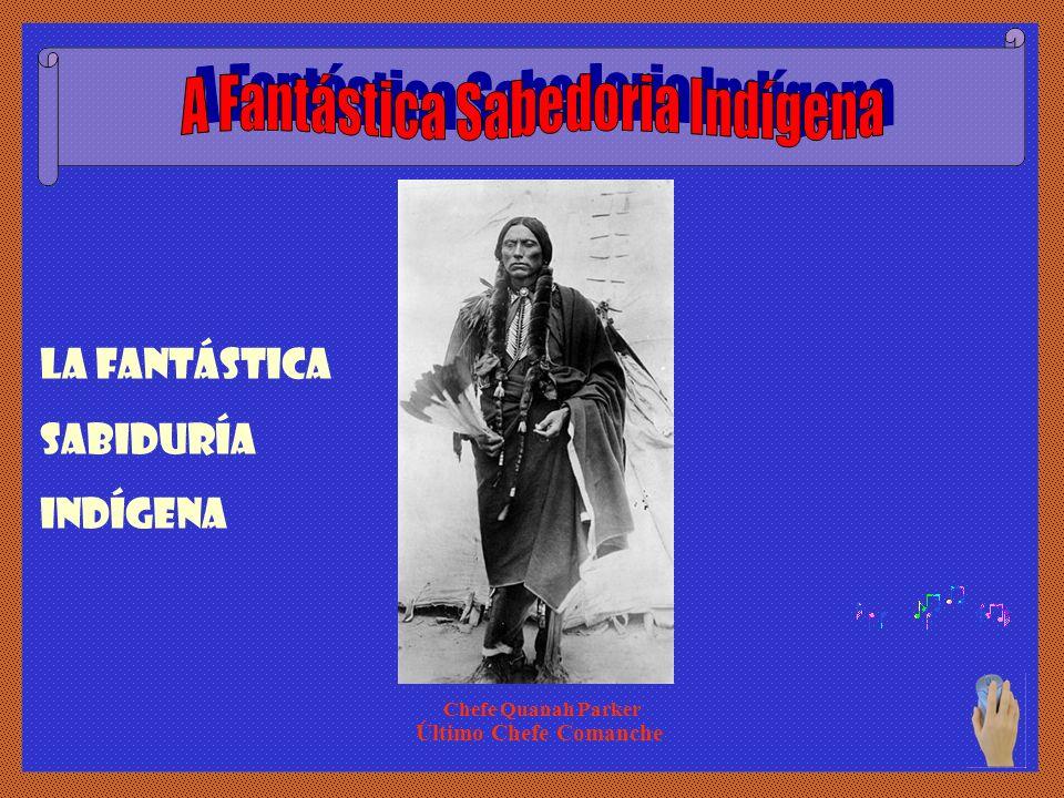 A Fantástica Sabedoria Indígena