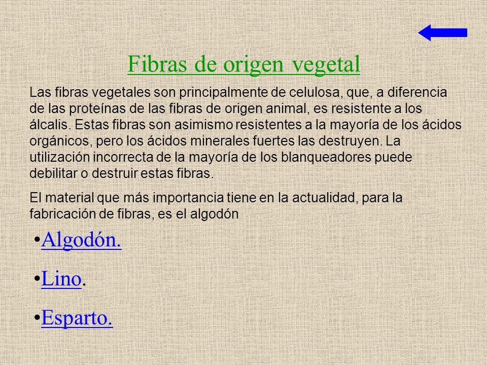 Fibras de origen vegetal